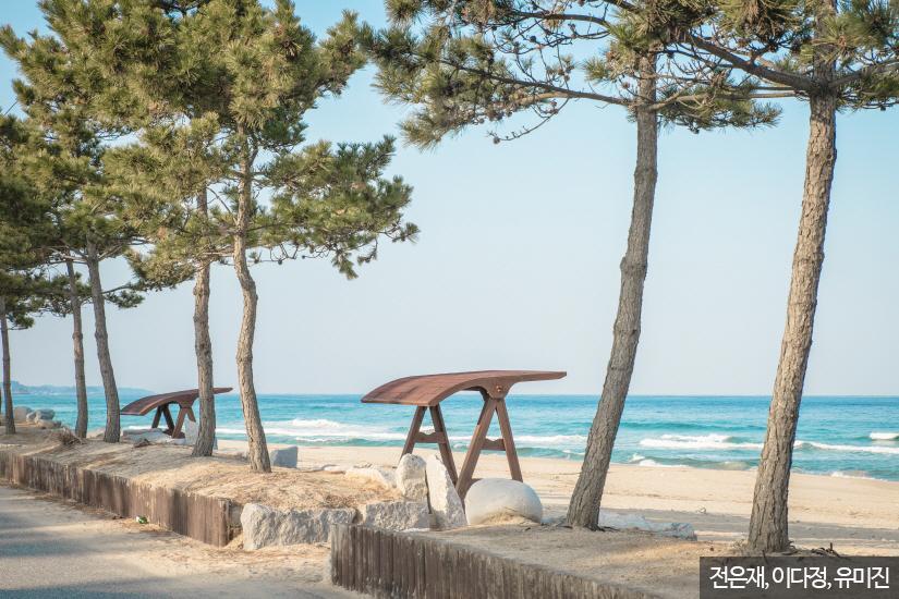 강릉 주문진, 향호해변4