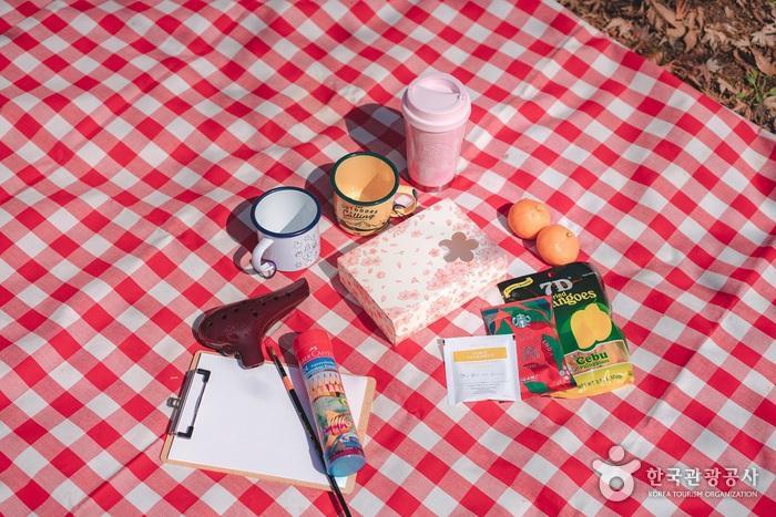 챙겨온 커피와 간식 그리고 오카리나와 색연필