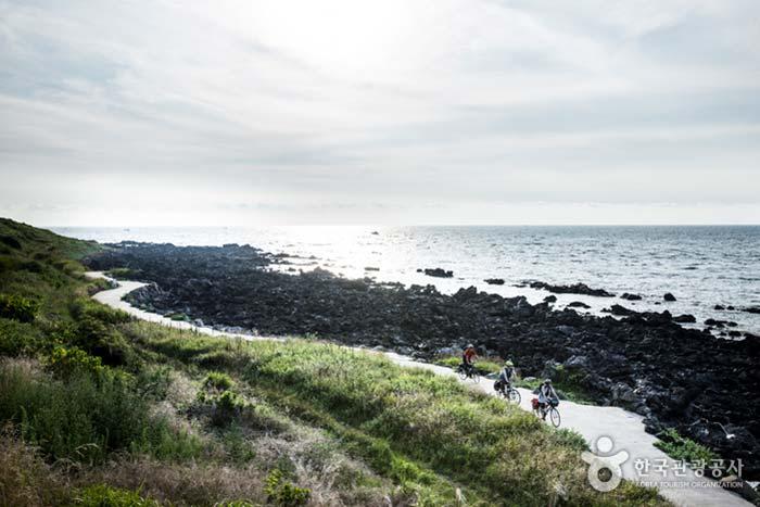 바다와 벗하며 달리는 제주환상 자전거길