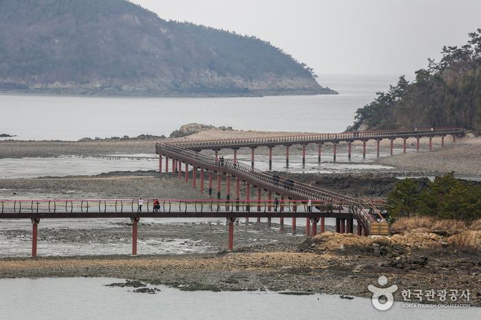 2019년 9월 신안 자은도에 개통한 무한의다리