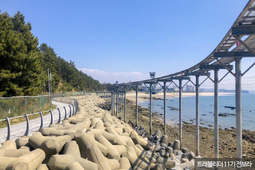 대천해수욕장3