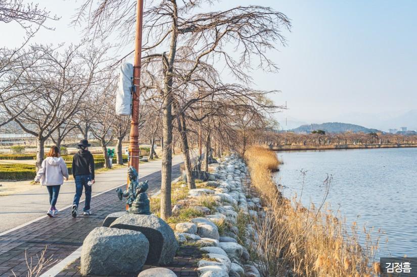 강릉 경포호 산책로 3