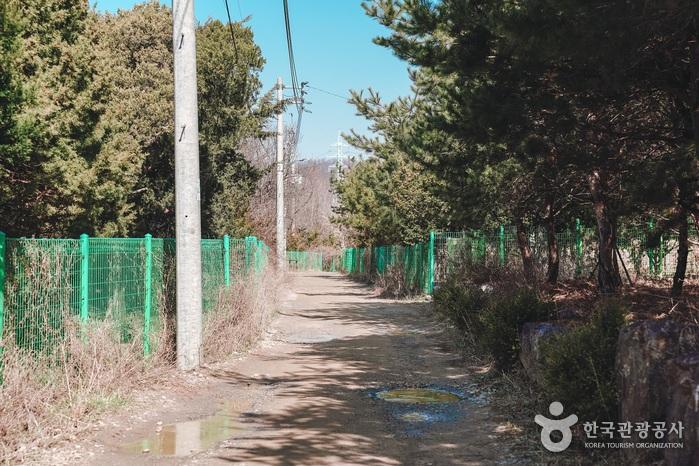 비포장도로를 지나 반듯한 마을길이 시작된다.