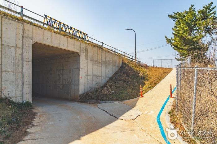 해파랑길 표지는 왼쪽 굴다리를 통과하는 것으로 되어 있지만, 사진상 오른쪽 길로 진행해야 옥계해변으로 향할 수 있다.
