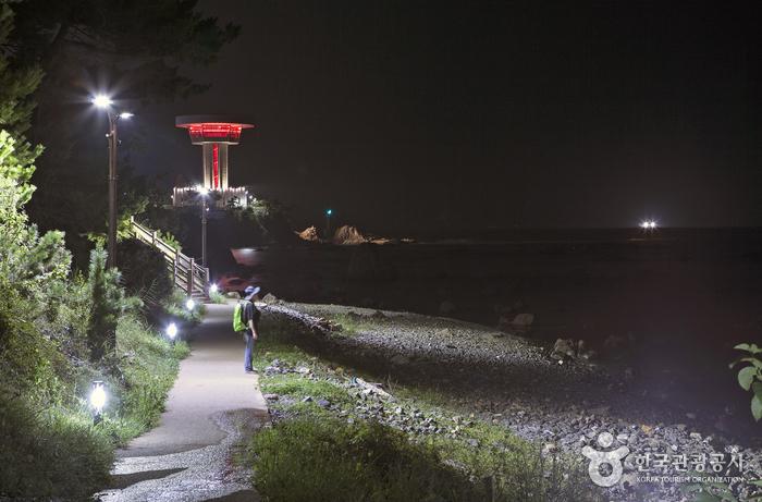 조망타워를 지나면 몽돌해변이 나온다.
