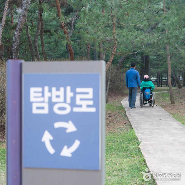 장릉 탐방로