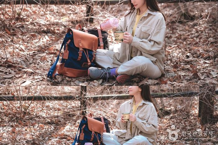 숲길에서 마시는 따뜻한 차 한잔