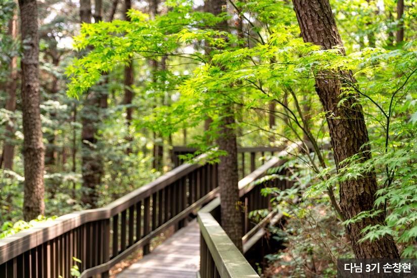 가좌산숲길4