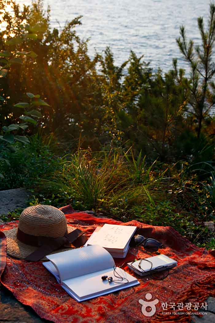 혼자 보내도 좋은 섬의 휴식