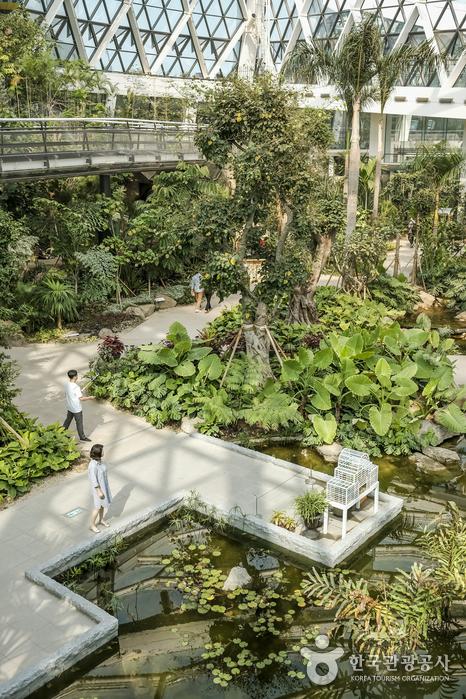 봄나들이 코스로 좋은 서울식물원