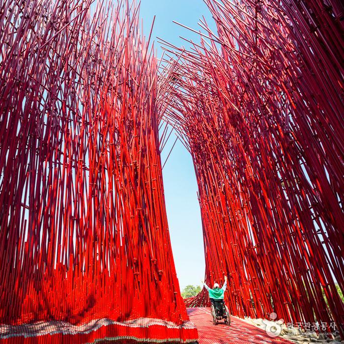 젊은달와이파크 입구(붉은대나무) 1