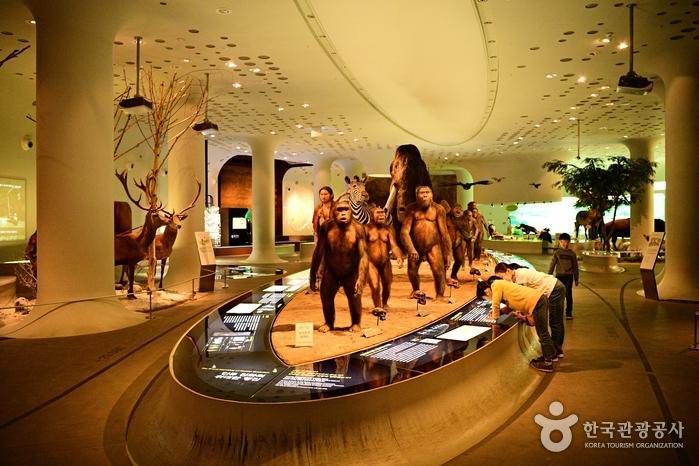 인류의 진화 과정을 보여주는 정교한 모형이 행진하듯 늘어섰다.