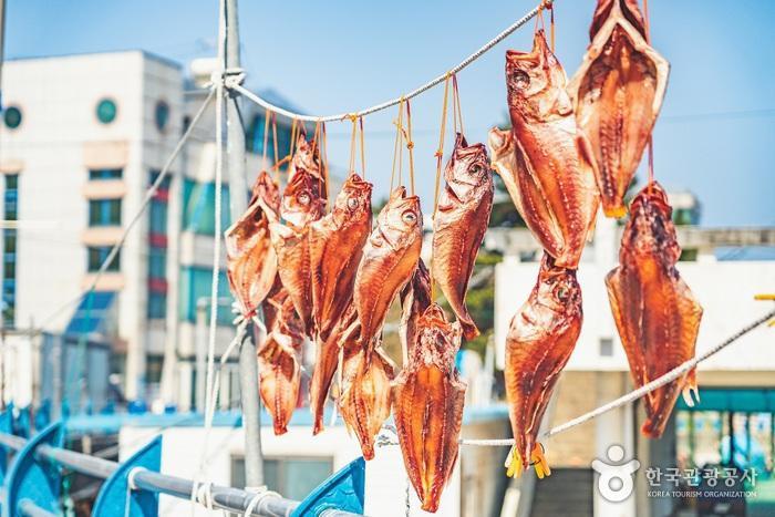 바닷가 마을에서 물고기 말리는 모습을 보는 일은 언제나 즐겁다.