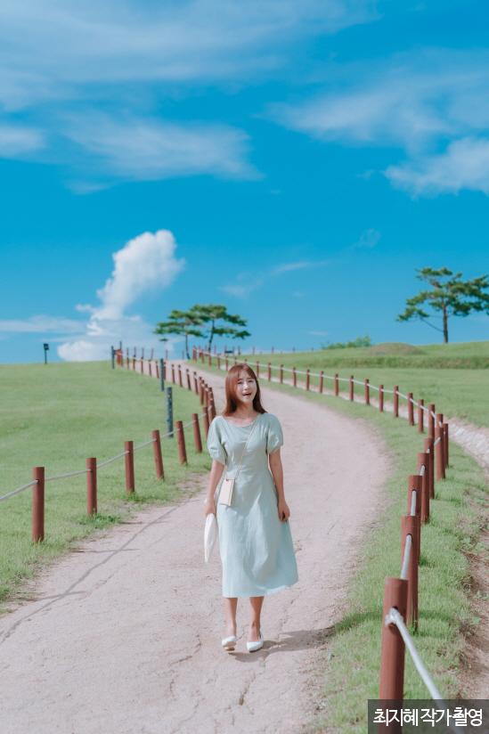 나무가 서있는 길