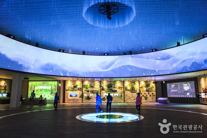 복합 생태 문화 테마파크 문경에코랄라에서 최첨단 멀티미디어 쇼 '포레스트 판타지아'가 펼쳐진다.