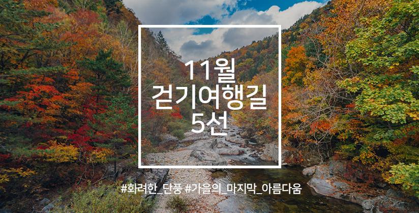 11월 걷기여행길 5선