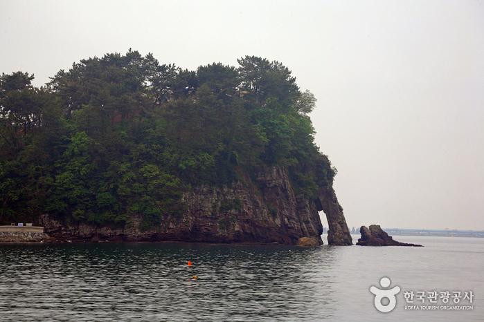 남일대해수욕장에 있는 코끼리바위