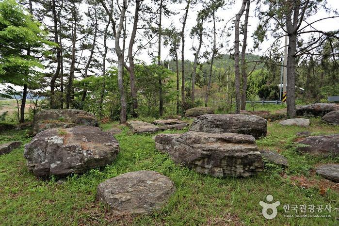 청동기시대를 대표하는 무덤 유적인 완도고금도지석묘군을 만나는 고인돌공원