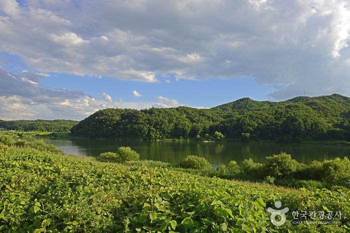 강천섬은 남한강에 떠 있는 섬이다.