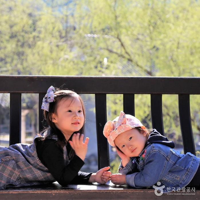 포즈 취하는 아이들 사진