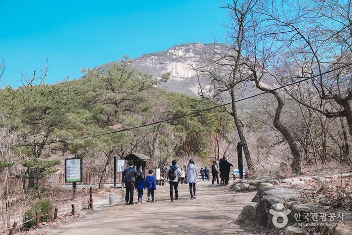 많은 등산객들이 길을 즐기고 있다.