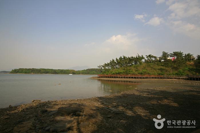 비토국민여가캠핑장 주변에 갯벌이 드러난 바다와 해안 산책로