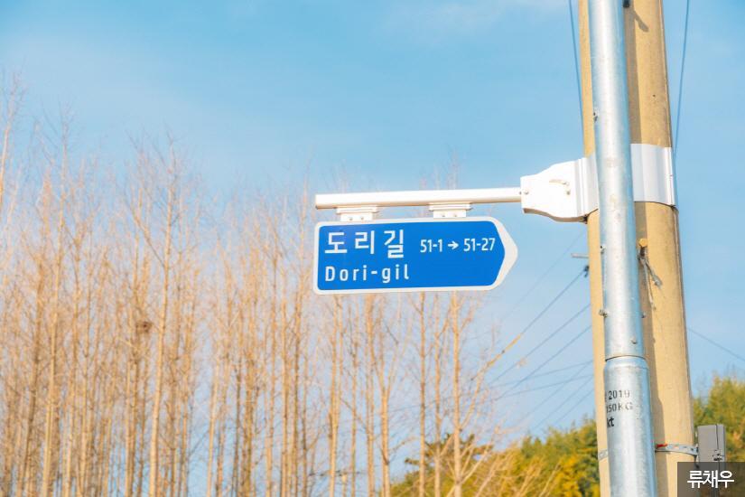 경주 도리마을1