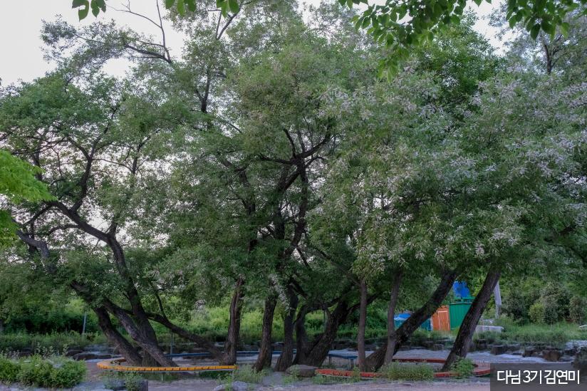 풍암호수공원