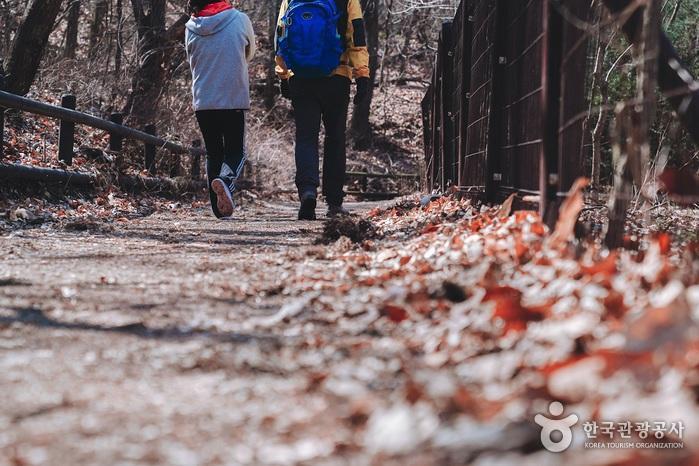북한산둘레길 09,10코스를 걸으며 만난 자연의 소리들