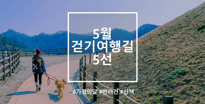 5월 걷기여행길 5선