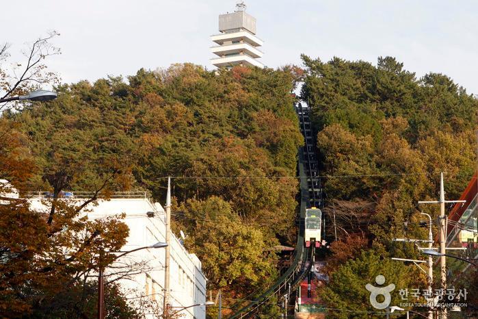진해탑과 제황산공원모노레일카