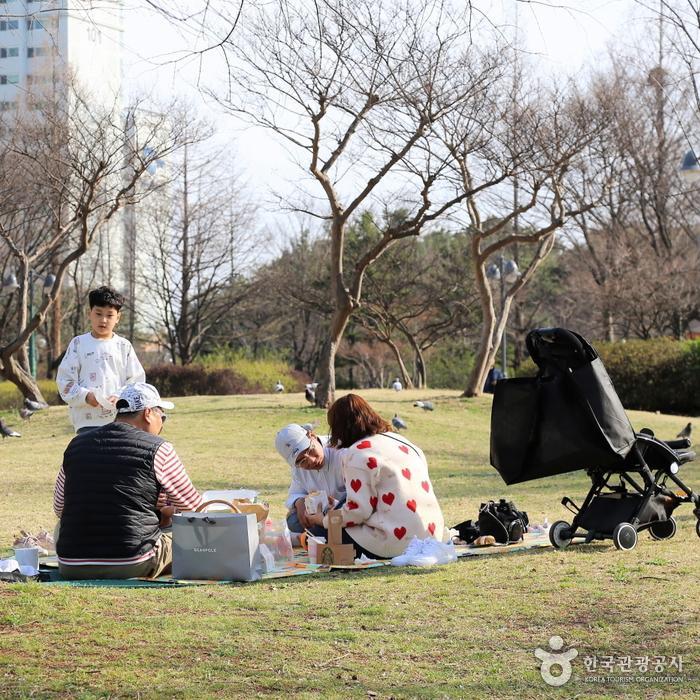 봄날의 피크닉 사진
