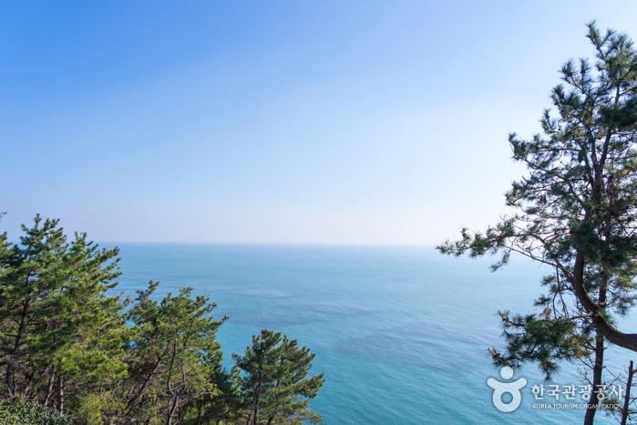 미포 그리고 해운대 바다