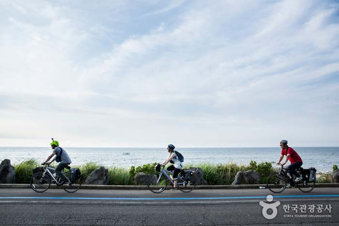 자전거전용도로가 있어 편리하다