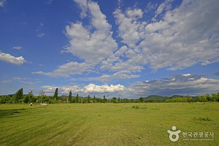 강천섬의 잔디광장