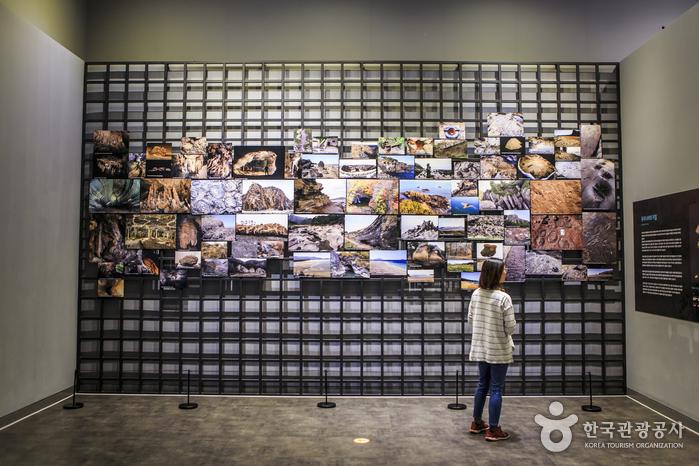 남북한의 다양한 천연기념물 표본과 명승을 소개하는 천연기념물센터
