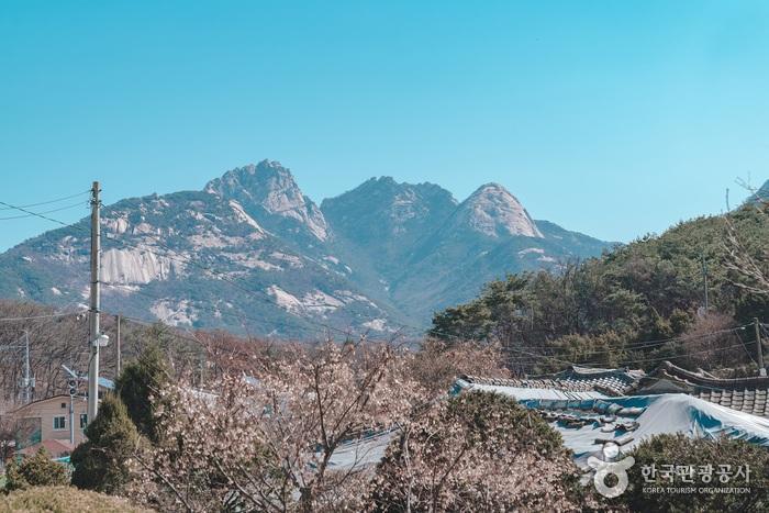 북한산의 모습