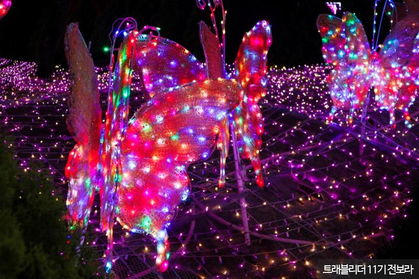 프로방스 빛 축제