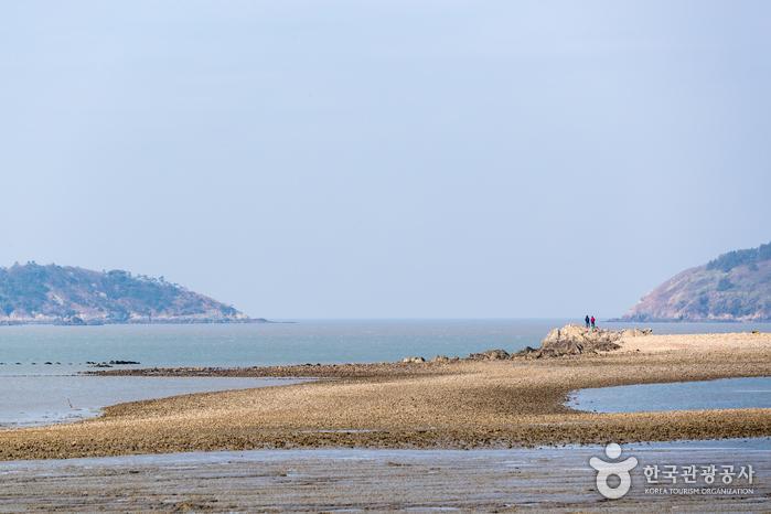 무한의다리 끝에서 만난 할미도 해변