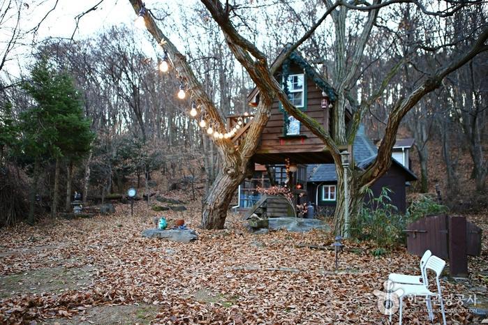 멋진 트리하우스가 반기는 야외 정원