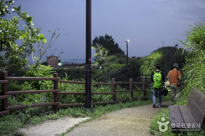 어스름이 밀려오는 저녁 산책길을 걷는 두 여행객