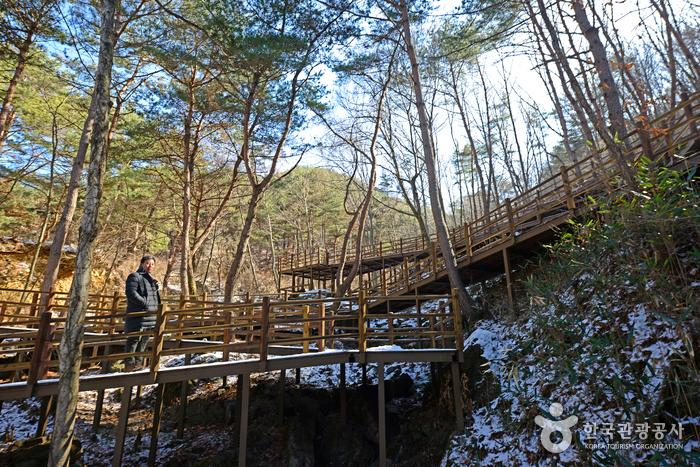 1.3km에 이르는 순환형 숲 산책로 '늘해랑누리길'
