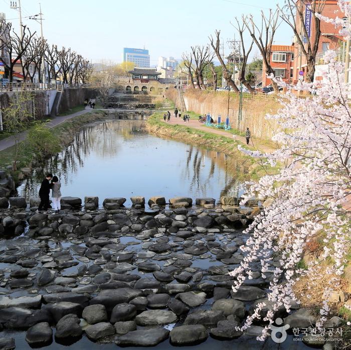 화홍문과 수원천 봄풍경