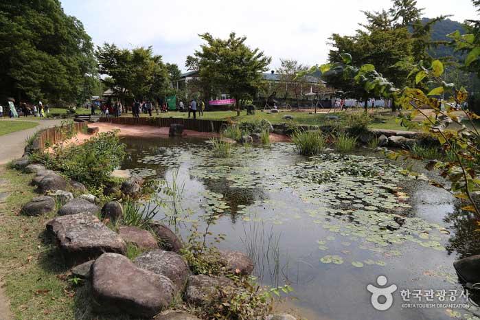 담빛예술창고 뒤편의 연못