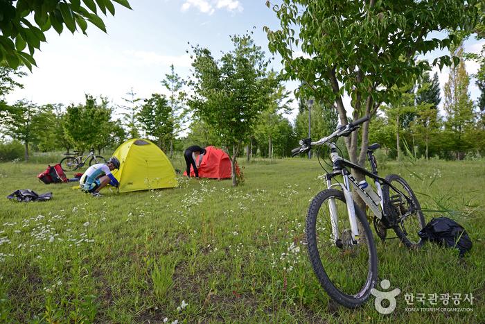 강천섬은 자전거로 캠핑을 즐기는 '자캠족'에게도 인기가 많다.