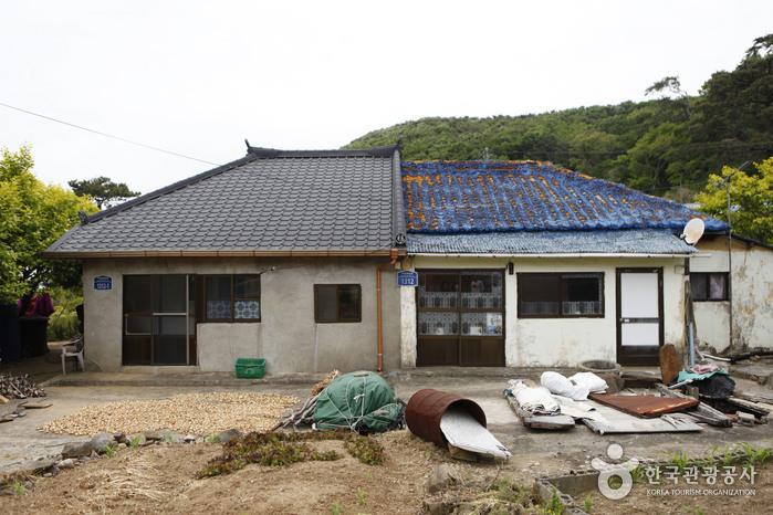 외양포 한 지붕 아래 두 가구. 좌우 지붕 모양이 긴 세월을 보여준다.