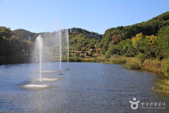 산꼭대기 분지에 넓은 생태연못이 조성돼 있다